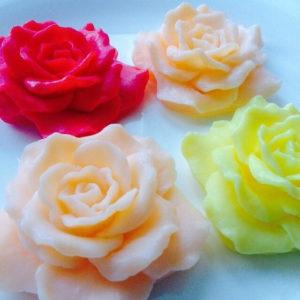 Силиконовые молды цветы и листья и ягоды